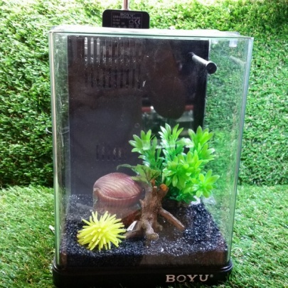 Slide Glass Tank (Boyu)