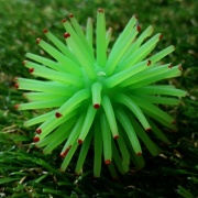 Rubber Hair Ball Green(S)