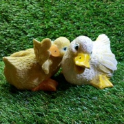 Ducking Bundle