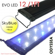"ODYSSEA EVO Led 12"" 18W Skyblue (10000K+blue)"