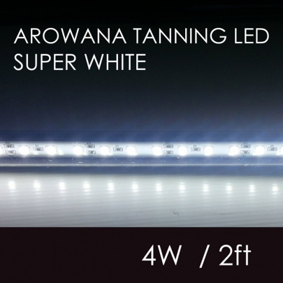 RIBAO Arowana led Sub (SUPER WHITE)4W 58cm
